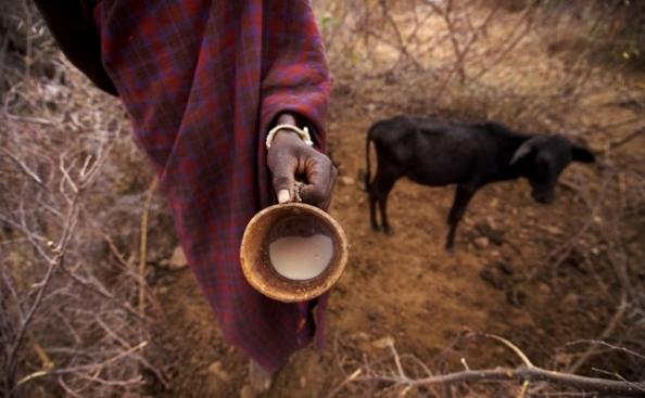 Café da manhã no alto do Loima – Longole Lochan mostra sua mísera ração andes de um longo dia de caminhada.