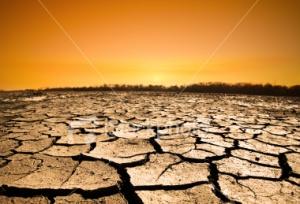 Países mais pobres não estão preparados para enfrentar a seca e a desertificação
