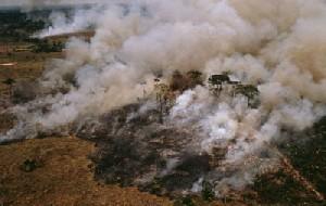 Desmatamento com queimada no Amazonas © WWF-Canon / Mark EDWARDS