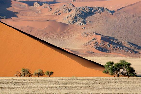 A fotografia de Philippe Moes mostra árvores, pedras e dunas avermelhadas que produzem um incrível contraste no deserto da Namíbia.