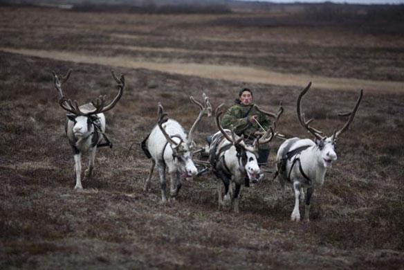 A Rússia – maior país do mundo em área geográfica – registra um aquecimento uma vez e meia maior que outras partes do mundo